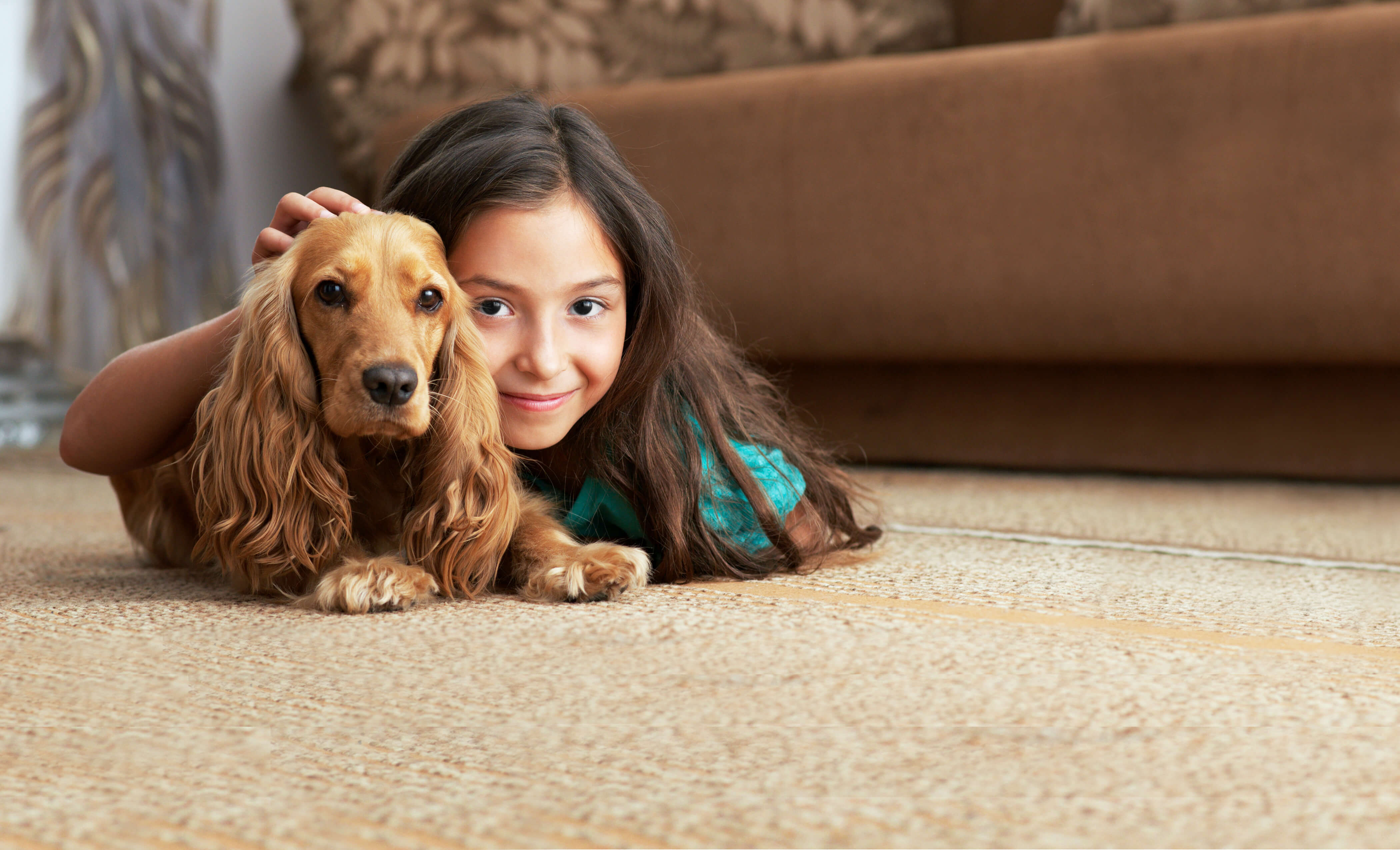 girl and dog playing on cleaned carpet lawndale