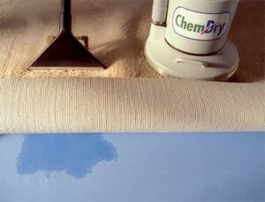 better carpet cleaning woodland hills