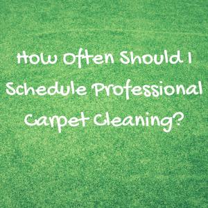 carpet cleaner venice
