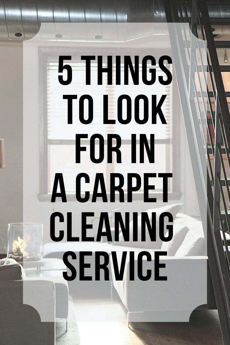 what to look for in a carpet cleaning company graphic