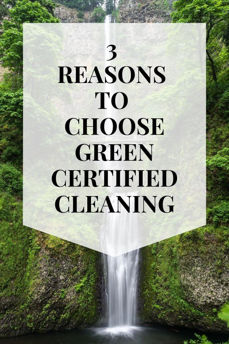 green cleaning la