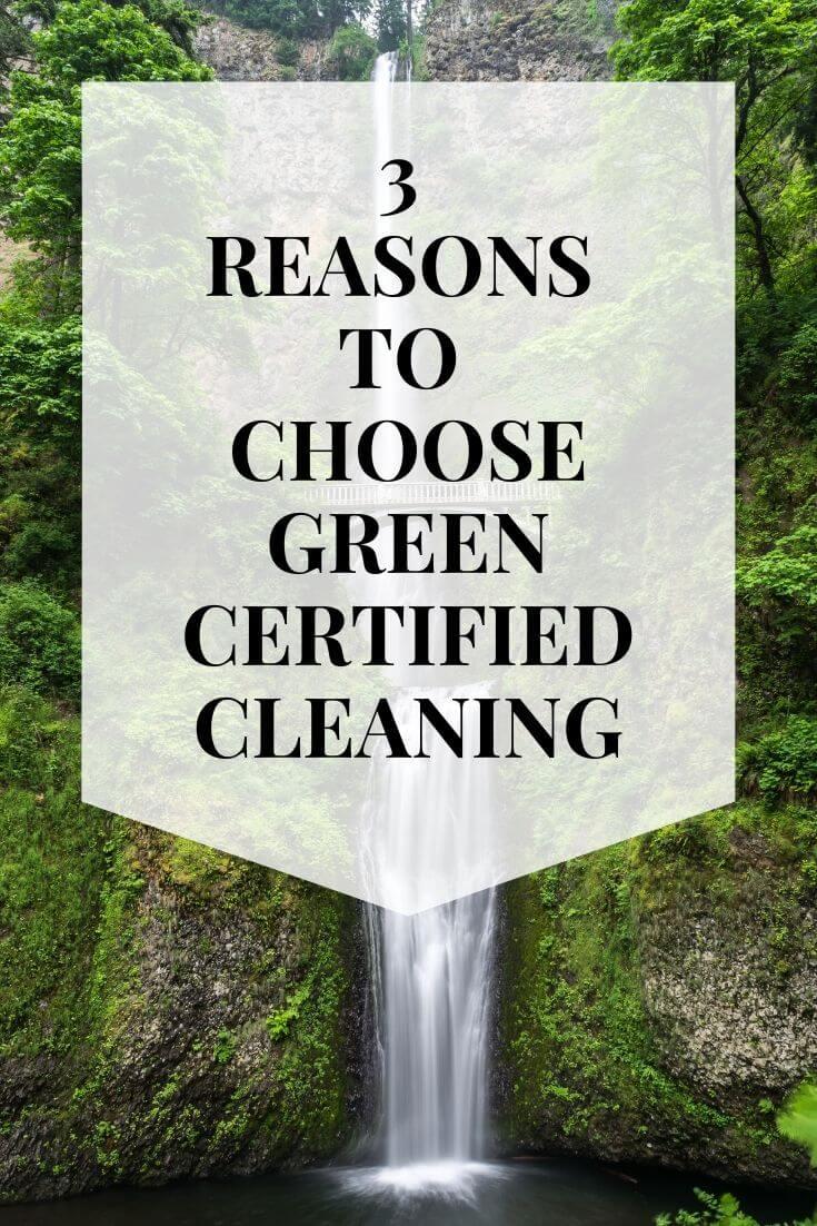 green cleaning la