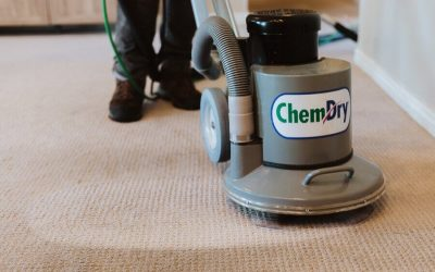 Steps You Can Take To Prepare for a Carpet Cleaning